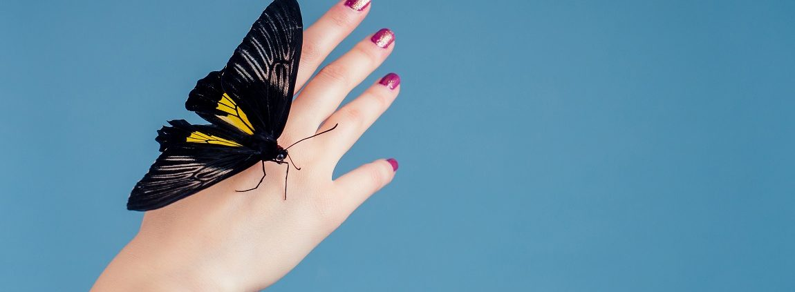 beautiful nude woman on blue background.girl and a beautiful butterfly